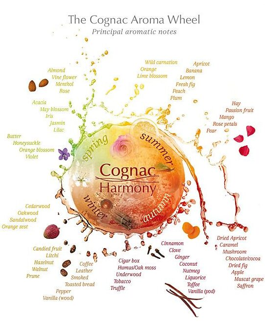 The Cognac aroma wheel